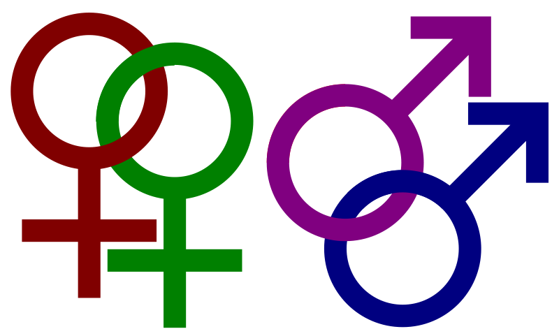 seksualnaya-orientatsiya-zakladivaetsya-g
